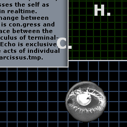"""Screen capture of """"Lexia to Perplexia"""" by Talan Memmott. A black-and-white eye is displayed over two grid-like images. Text: """"(incomplete)"""""""