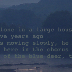 "Screen capture from ""Dawn"" by Reiner Strasser and Alan Sondheim. Image of a dark-tinged wilderness with three humanoid figures at the base, overlaid with opaque text. Text: Alone in a large house/five years ago/ s moving slowly, he/here in the chorus/of the blue deer, t/"""
